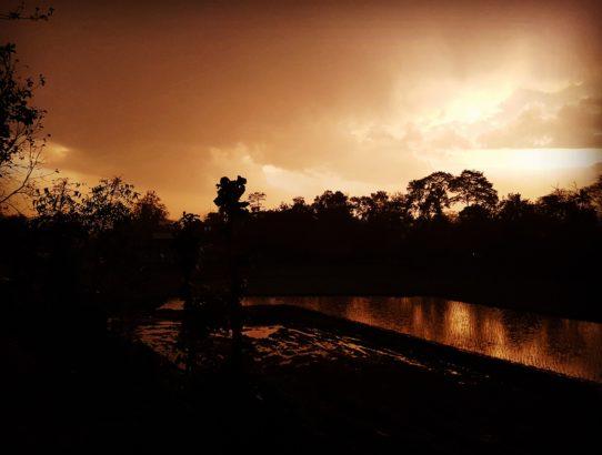 Jour 4 - Arrivée à Chitwan