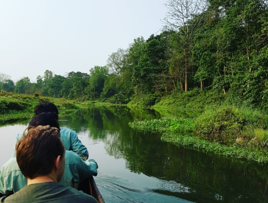 Jour 5 - Parc national de Chitwan