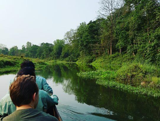 Jour 5 - Parc national de Chitwan
